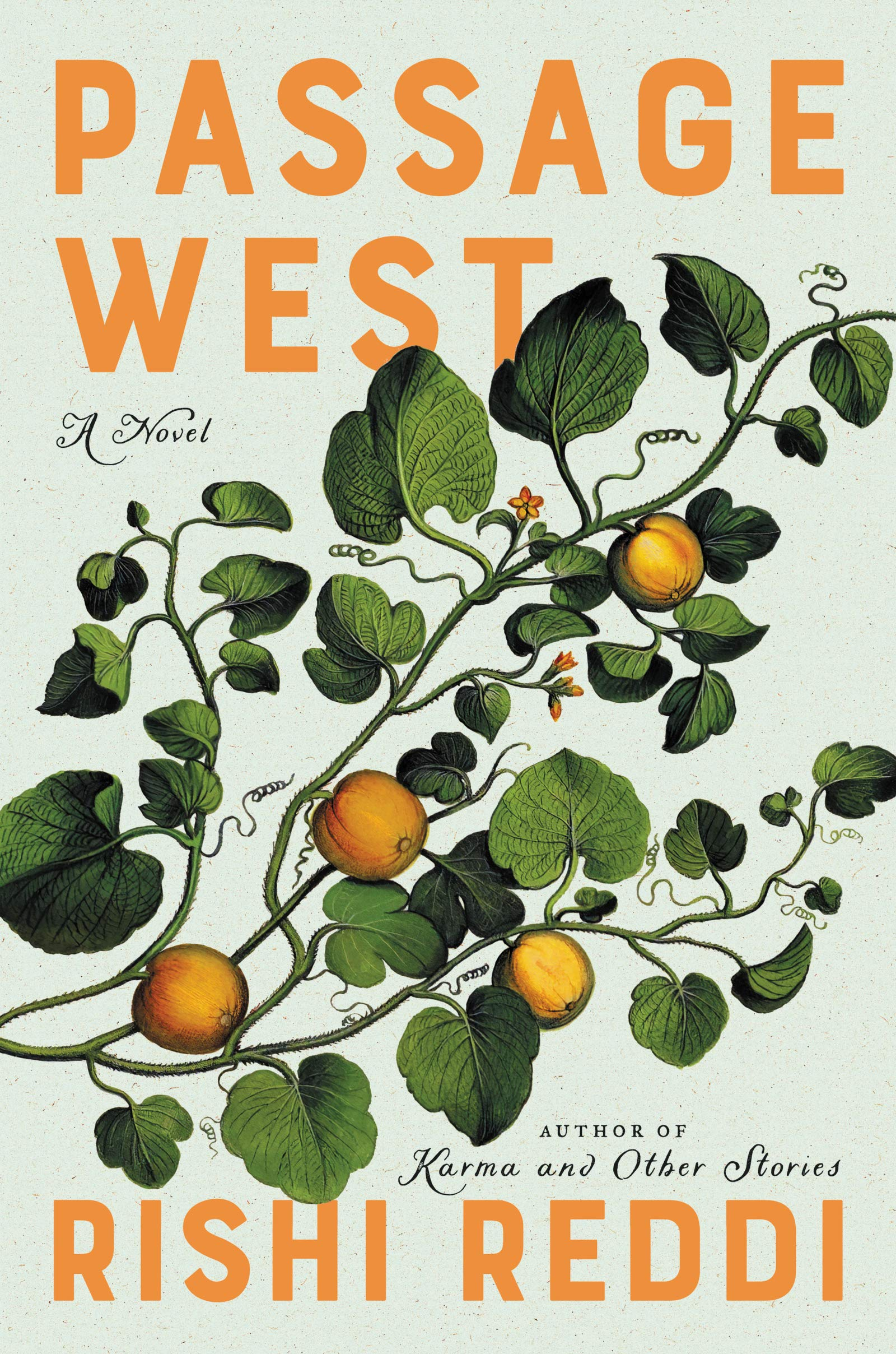 Passage West book cover